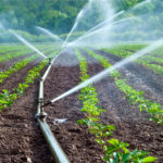Irrigation Supplies Products